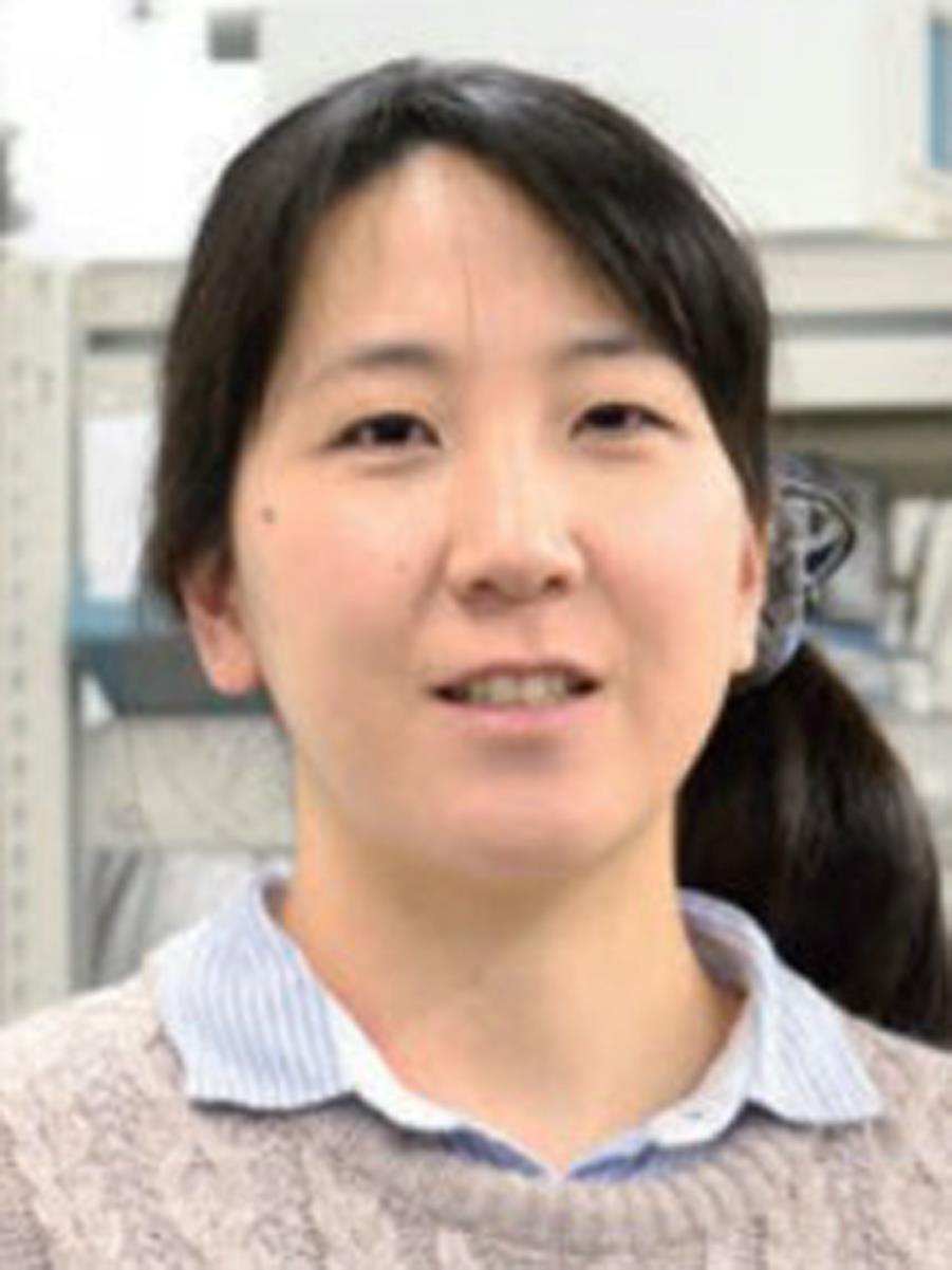 文部科学省科学研究費助成事業「新学術領域研究」平成28年~32年 複合アニオン化合物の創製と新機能組織構成